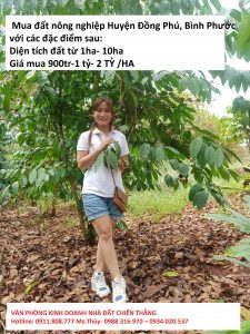 Tôi cần Mua đất nông nghiệp Huyện Đồng Phú, Bình Phước GIÁ CAO